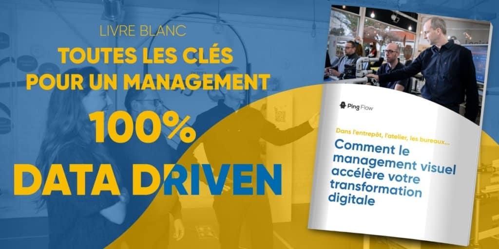 livre blanc management visuel